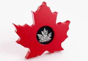 leaf display 1 300x208 - maple leaf