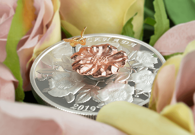 2018 Royal Canadian Mint Bee and Bloom Coin Lifestyle 4 - A complete SELL-OUT within hours! Introducing the latest innovative coin from the Royal Canadian Mint…