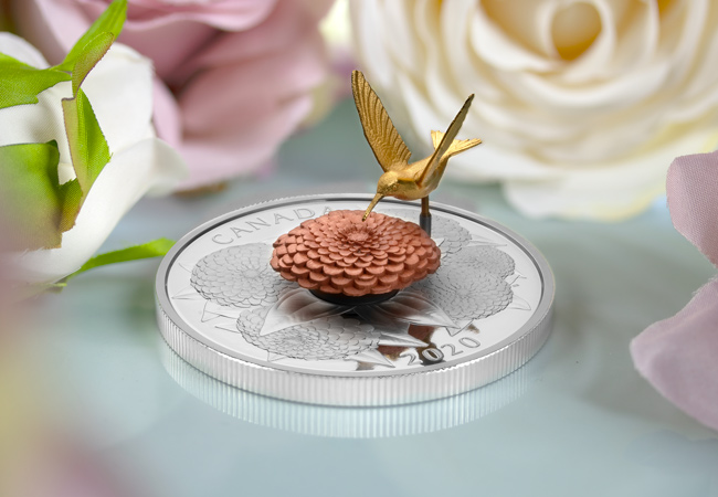 LS Hummingbird and Bloom Coin lifestyle 5 - A complete SELL-OUT within hours! Introducing the latest innovative coin from the Royal Canadian Mint…